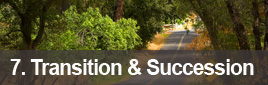 7: Transition & Succession