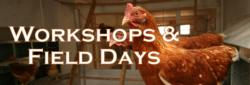Workshops & Field Days