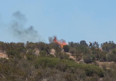 Miramar Fire Department Firefighters Conduct Prescribed Burns