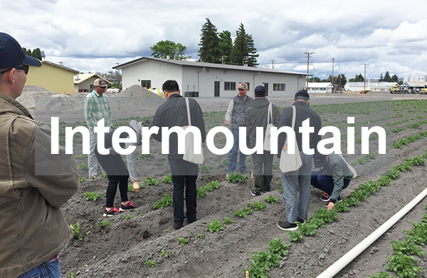 Intermountain REC