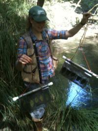 Heather stream monitoring