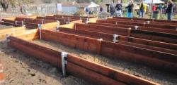 Newly built raised beds