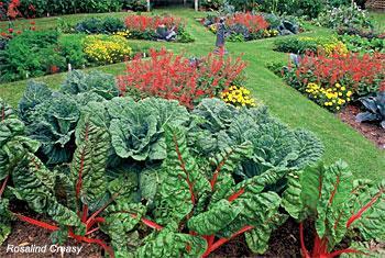 Edible Landscaping Sacramento MGs