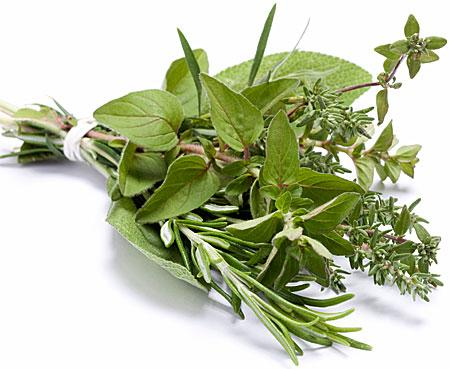 Grow herbs! - Sacramento MGs
