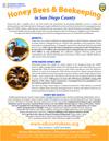 Adult_Honeybee_Factsheet-Eng_thmbnl-100w-129h