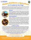 SPANISH_Adult_Honeybee_Factsheet_thmbnl-100w-129h