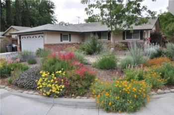 Low Water Use Landscapes - UCCE Master Gardeners of San ...