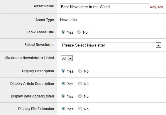 Newsletter asset options
