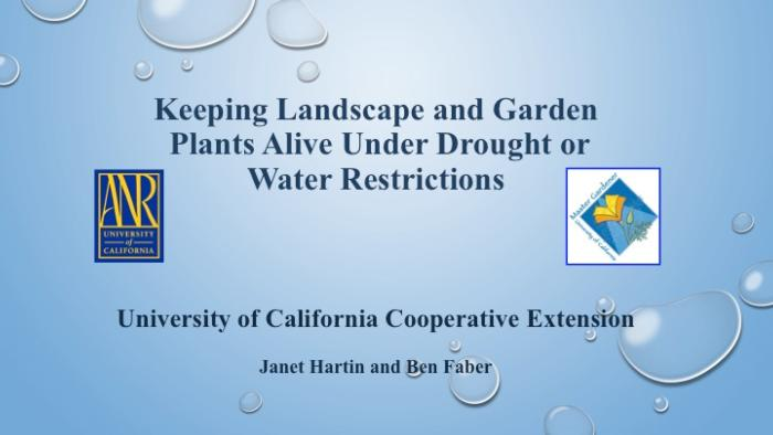 Keeping Landscape and Garden Plants Alive Under Drought or Water Restrictions