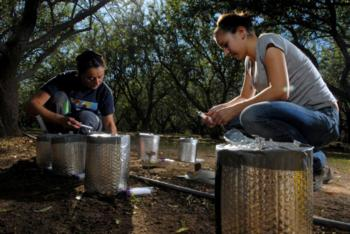 Maria Mar Alsina and Anna Clara Fanton sampling for spatial patterns of N-oxide emissions at an experimental orchard site. Colusa Co., 2012.