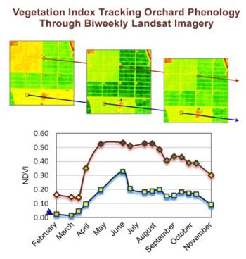 Fig. 3.NDVI values track the greenness of 2 orchards in 2008