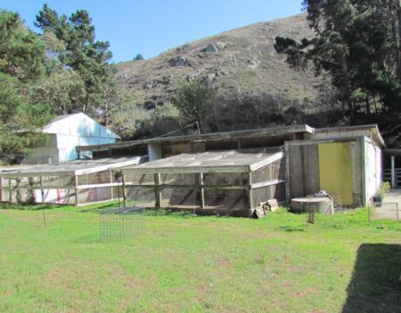 Daly City/Colma 4-H Farm