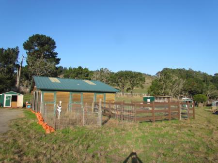 Pacifica 4-H Farm