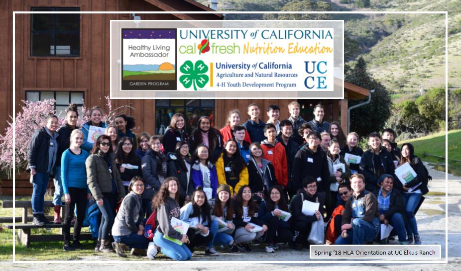 Healthy Living Ambassadors Program - 4-H in San Mateo & San