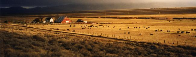 1AD-Great View of Home Ranch