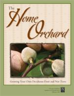 3485_HomeOrchard_cat