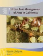 Urban Pest Management of Ants