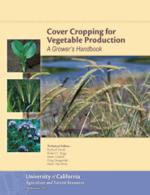 Veg Cover Cropping