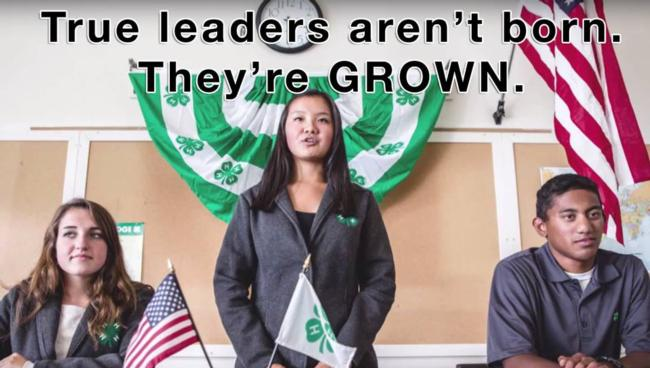 true leaders aren't born they're grown