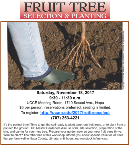 Fruit Tree Selection and Planting 2017