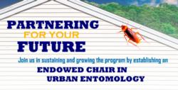endowed chair logo